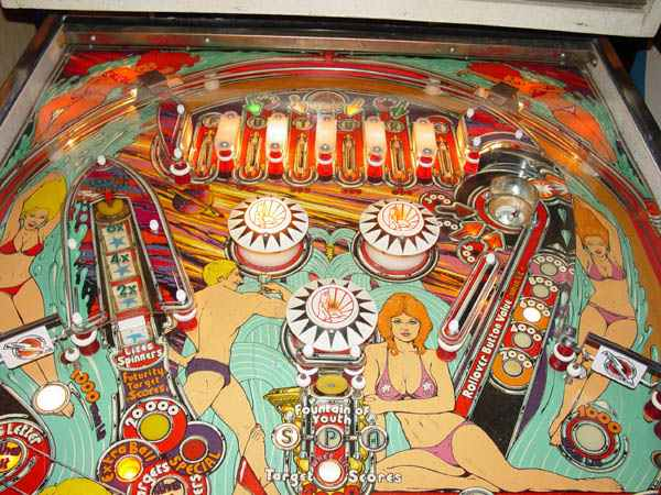future spa pinball machine for sale
